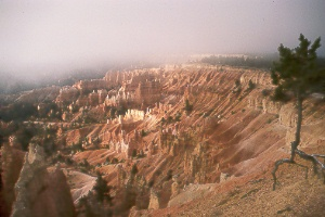 Bryce Amphitheater from Sunrise Point in Bryce Canyon Natl. Park
