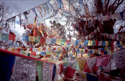 Besides releasing prayers, the flags are said to purify the air and pacify the gods.