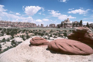 Chesler Park in the Needles District