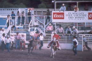 Pine Country Pro Rodeo