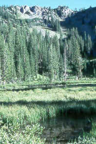 Dog Lake in Big Cottonwood Canyon