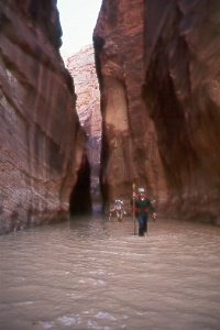 in the Narrows of Paria Canyon