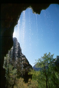 Weeping Rock in Zion Natl. Park